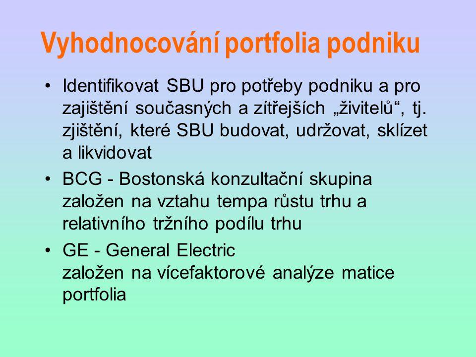 Vyhodnocování portfolia podniku