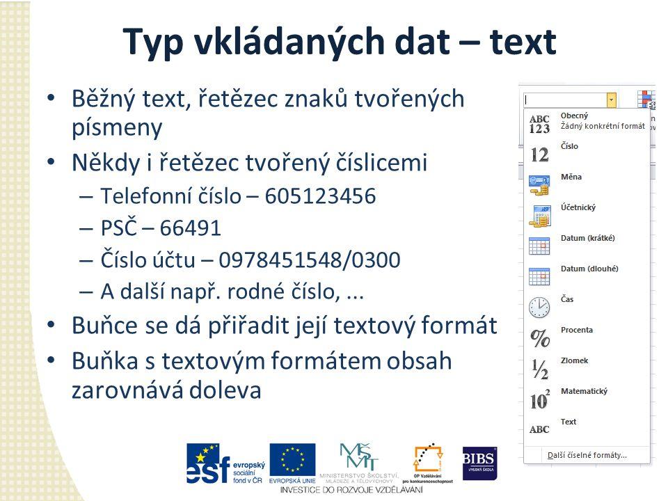 Typ vkládaných dat – text