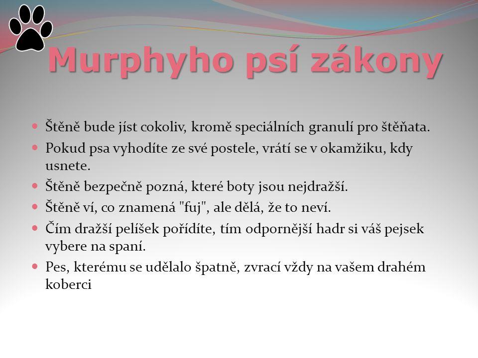 Murphyho psí zákony Štěně bude jíst cokoliv, kromě speciálních granulí pro štěňata.