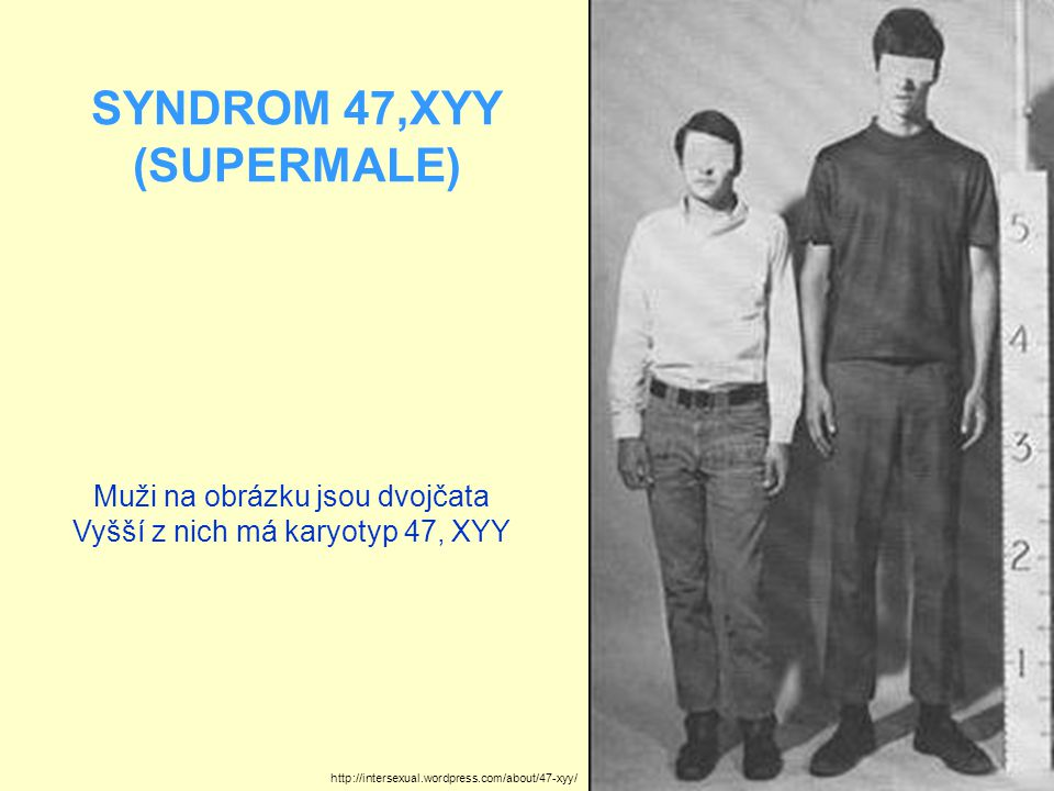 SYNDROM 47,XYY (SUPERMALE)