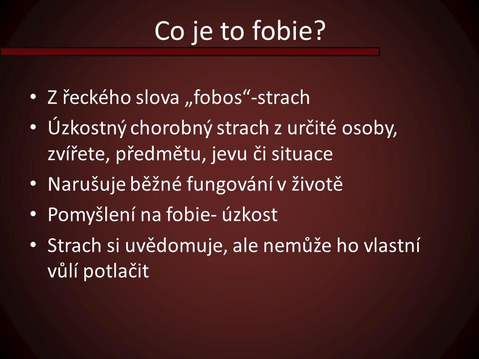 """Co je to fobie Z řeckého slova """"fobos -strach"""
