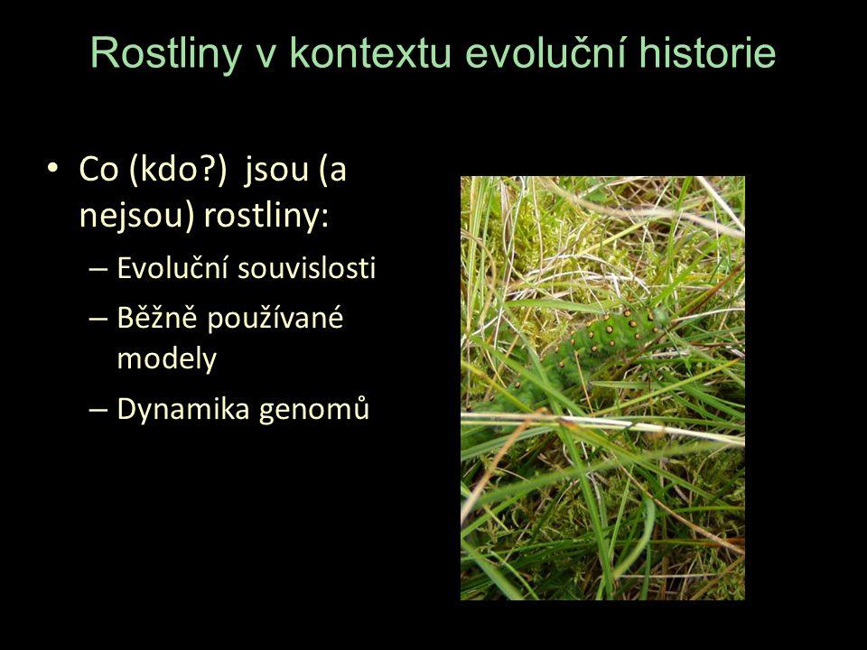Rostliny v kontextu evoluční historie