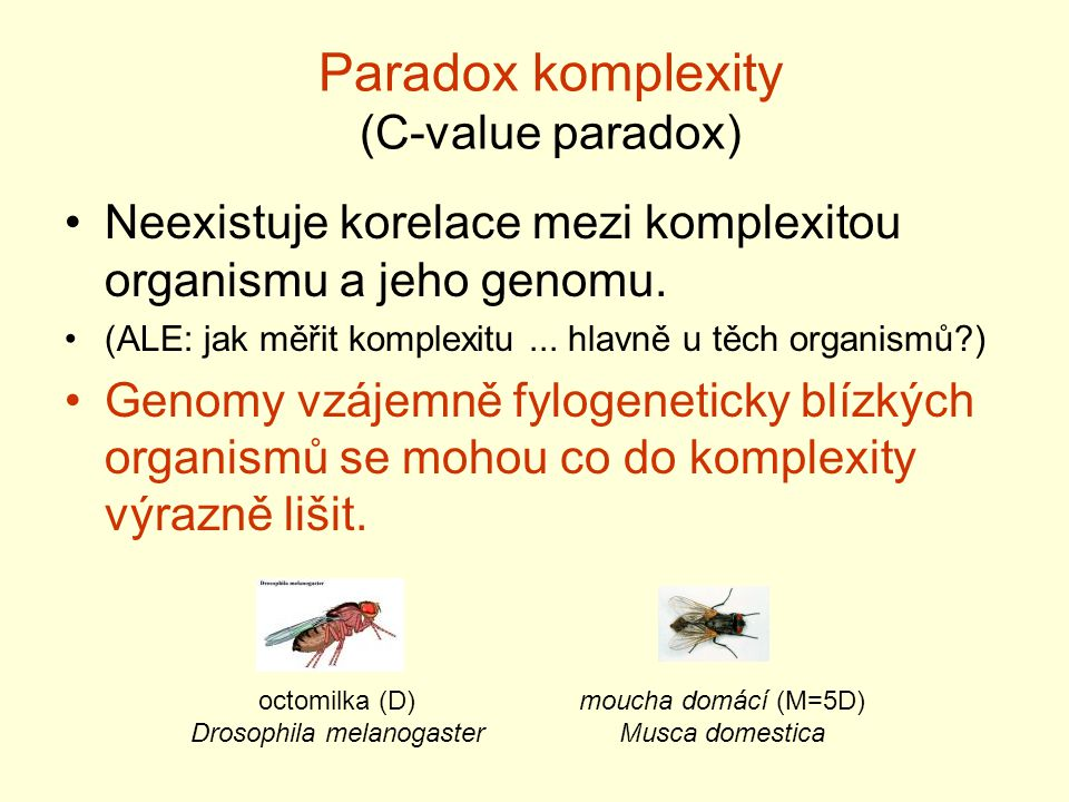 Paradox komplexity (C-value paradox)