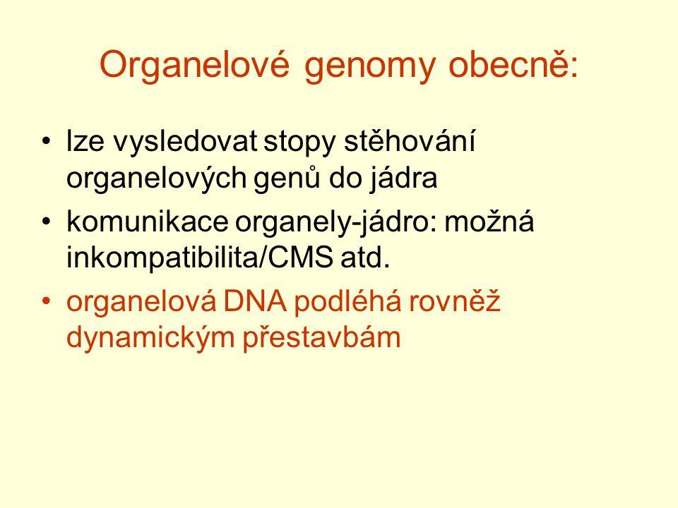 Organelové genomy obecně: