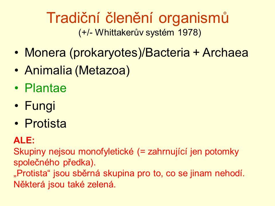 Tradiční členění organismů