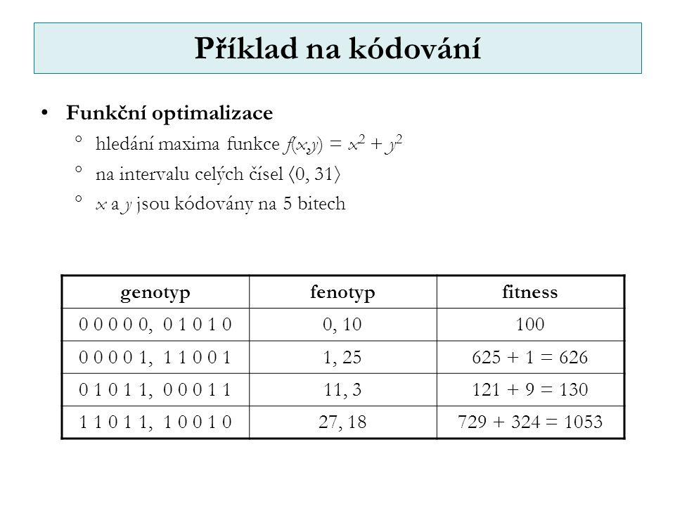 Příklad na kódování Funkční optimalizace