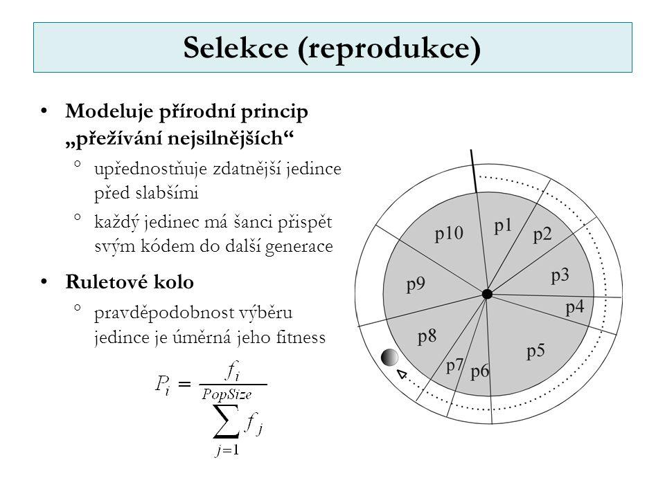 """Selekce (reprodukce) Modeluje přírodní princip """"přežívání nejsilnějších upřednostňuje zdatnější jedince před slabšími."""