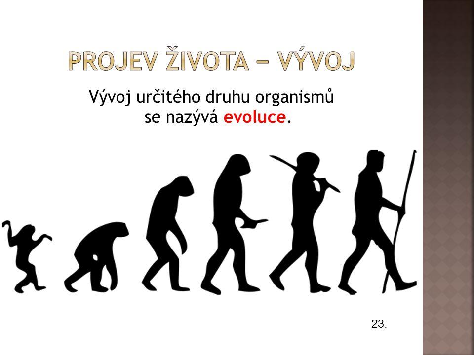 Vývoj určitého druhu organismů se nazývá evoluce.