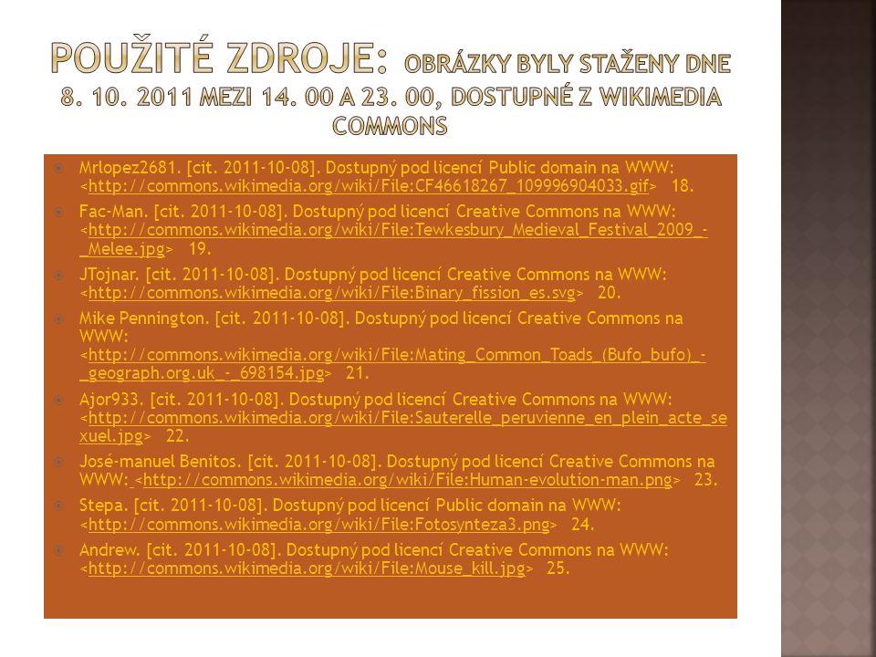 Použité zdroje: Obrázky byly staženy dne 8. 10. 2011 mezi 14. 00 a 23