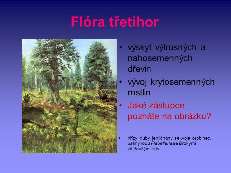 Flóra třetihor výskyt výtrusných a nahosemenných dřevin