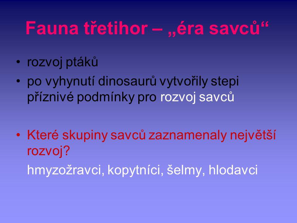 "Fauna třetihor – ""éra savců"