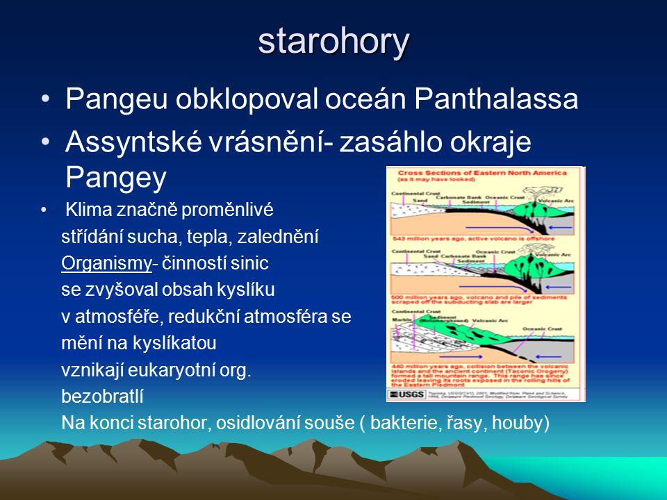 starohory Pangeu obklopoval oceán Panthalassa