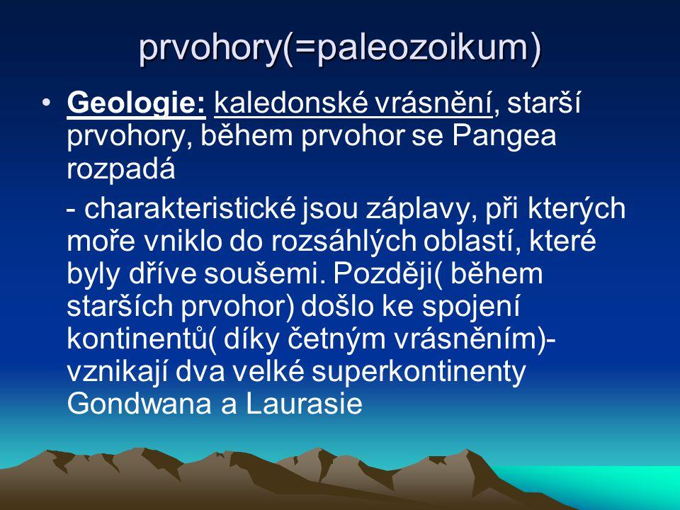 prvohory(=paleozoikum)