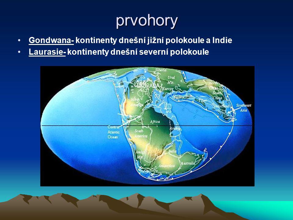 prvohory Gondwana- kontinenty dnešní jižní polokoule a Indie