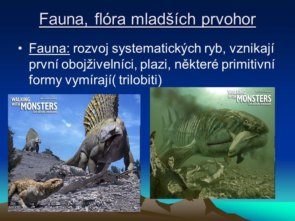 Fauna, flóra mladších prvohor