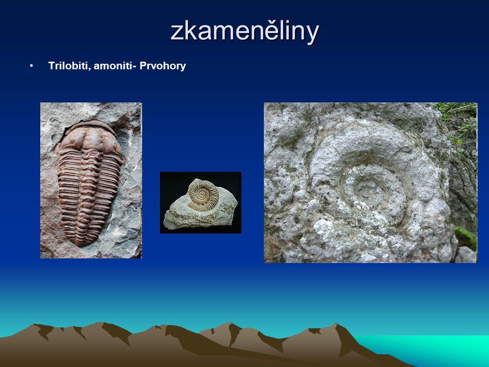 zkameněliny Trilobiti, amoniti- Prvohory
