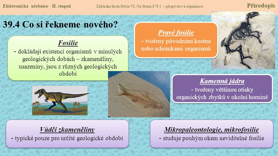 Mikropaleontologie, mikrofosilie
