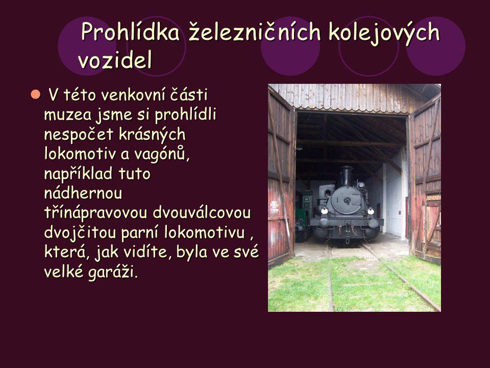 Prohlídka železničních kolejových vozidel