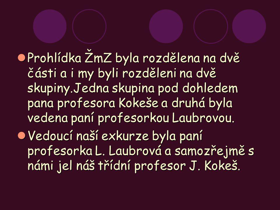 Prohlídka ŽmZ byla rozdělena na dvě části a i my byli rozděleni na dvě skupiny.Jedna skupina pod dohledem pana profesora Kokeše a druhá byla vedena paní profesorkou Laubrovou.