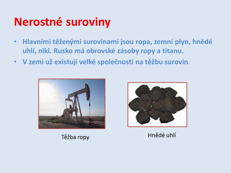 Nerostné suroviny Hlavními těženými surovinami jsou ropa, zemní plyn, hnědé uhlí, nikl. Rusko má obrovské zásoby ropy a titanu.