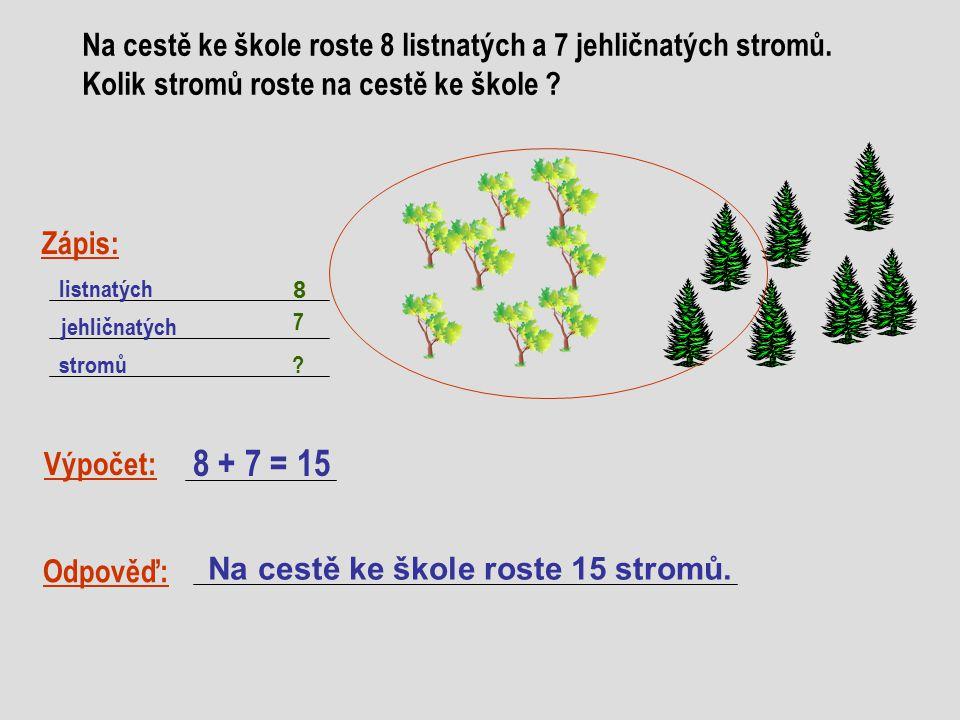 Na cestě ke škole roste 8 listnatých a 7 jehličnatých stromů.