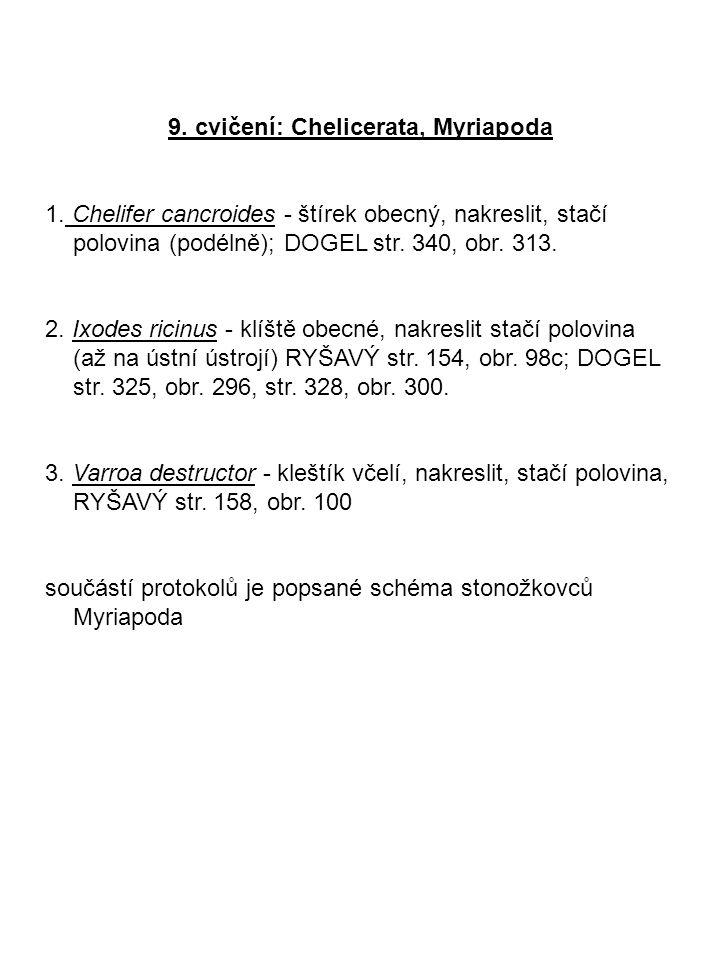 9. cvičení: Chelicerata, Myriapoda