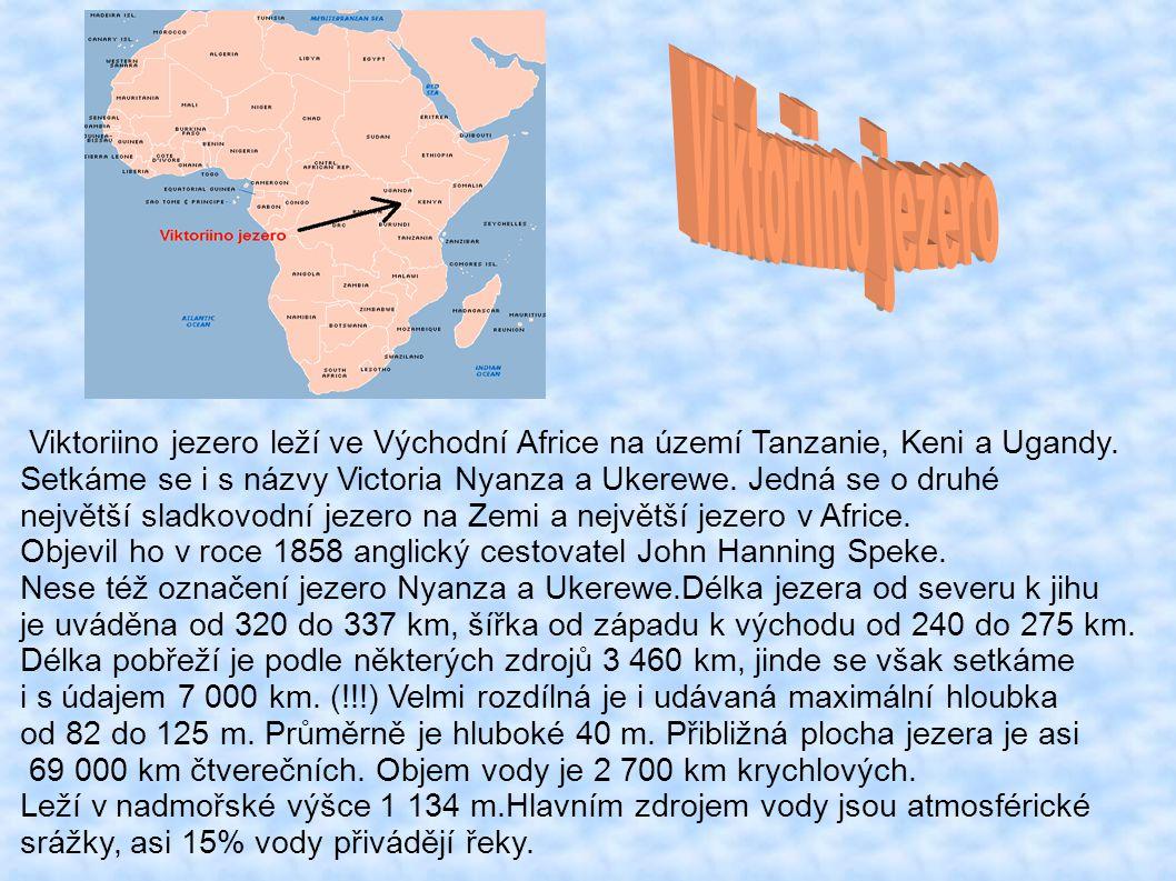 Viktoriino jezero Viktoriino jezero leží ve Východní Africe na území Tanzanie, Keni a Ugandy.