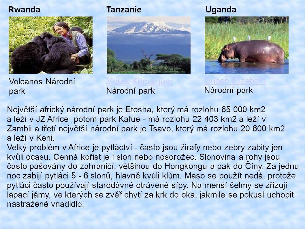 Rwanda Tanzanie. Uganda. Volcanos Národní. park. Mount Kilimanjaro. Národní park. Queen Elizabeth.