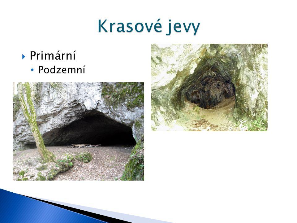 Krasové jevy Primární Podzemní