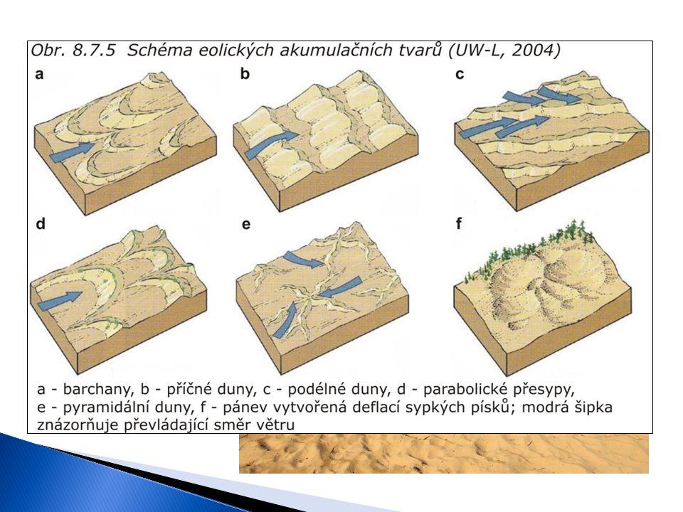 Atmosférické vlivy Činnost větru Sedimentace Písečné duny