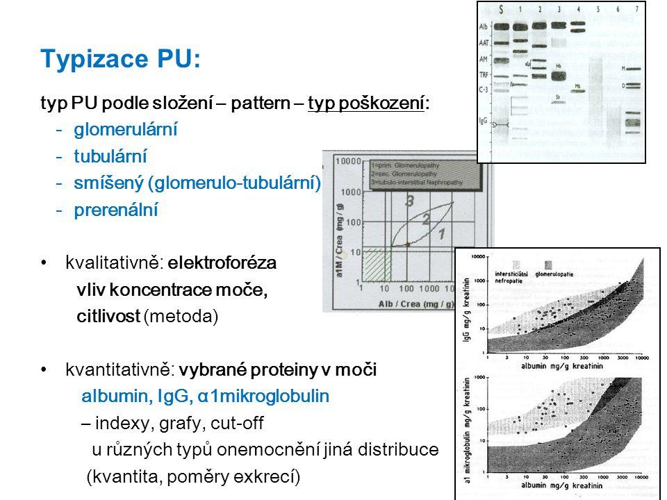 Typizace PU: typ PU podle složení – pattern – typ poškození: