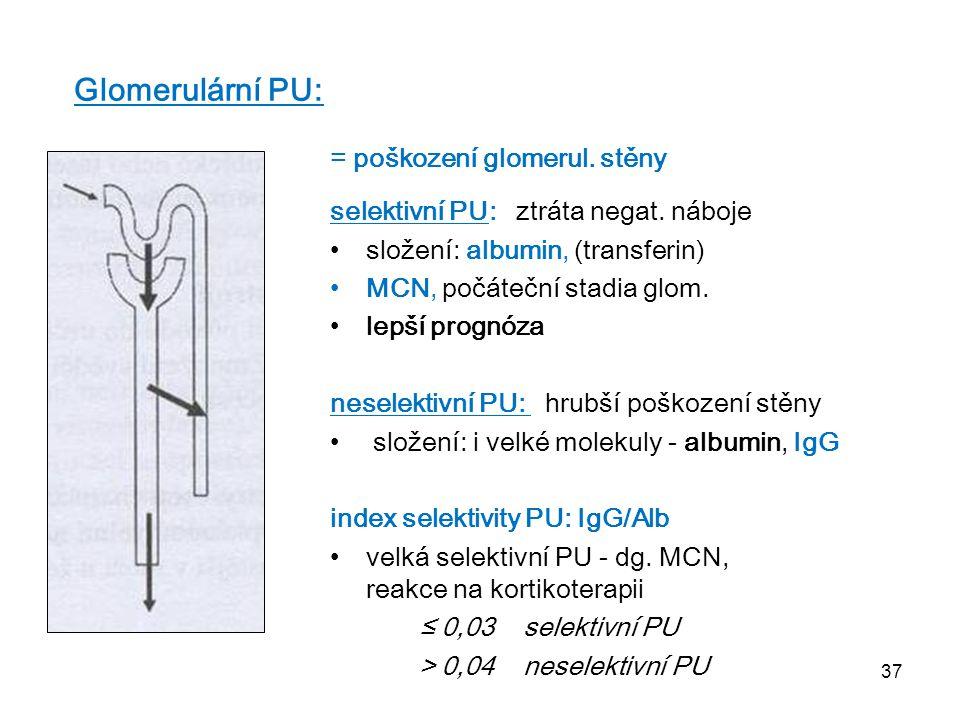 Glomerulární PU: = poškození glomerul. stěny