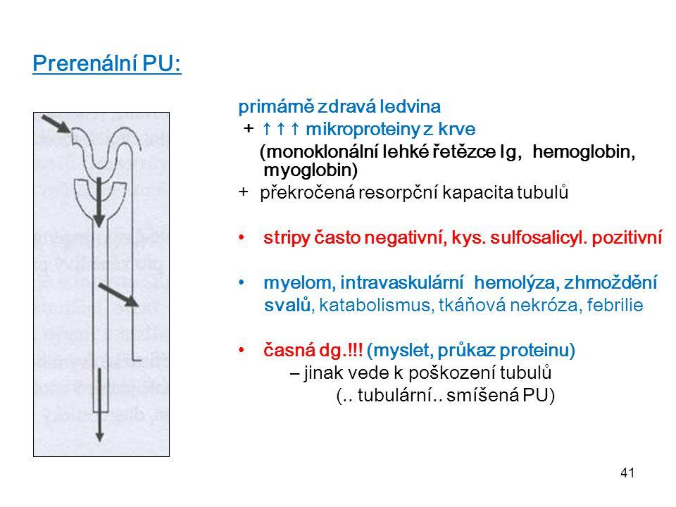 Prerenální PU: primárně zdravá ledvina + ↑↑↑ mikroproteiny z krve