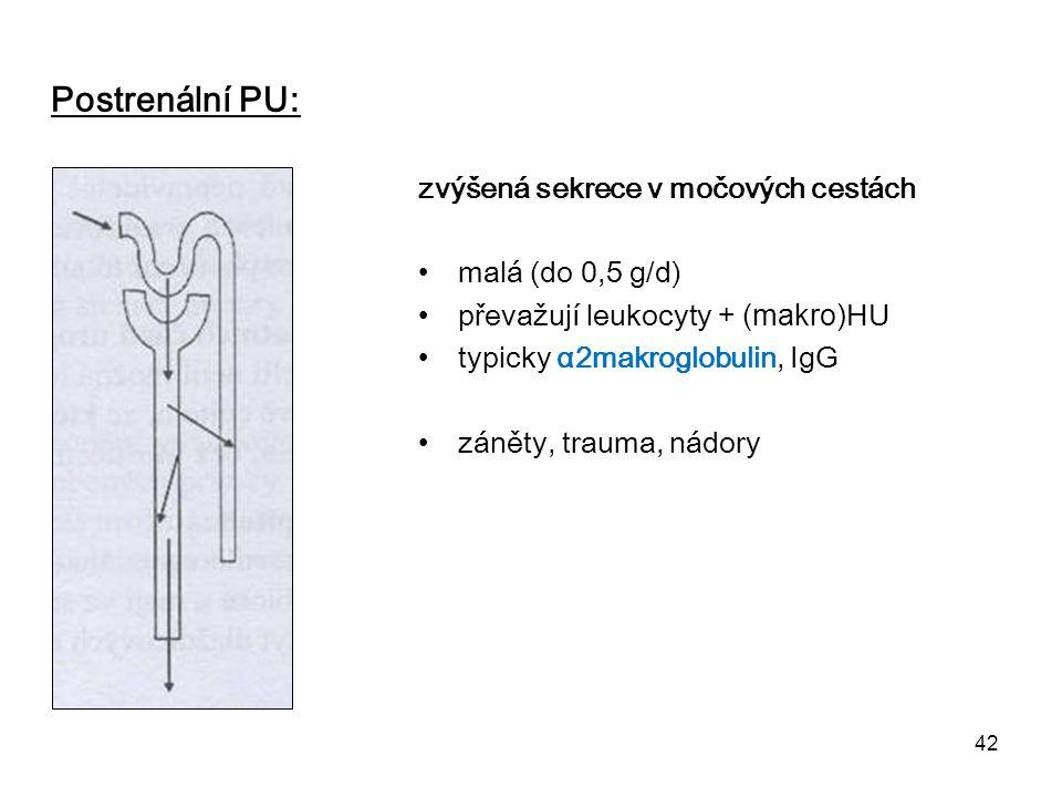 Postrenální PU: zvýšená sekrece v močových cestách malá (do 0,5 g/d)