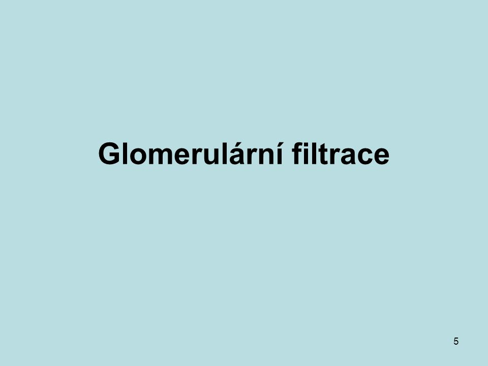 Glomerulární filtrace
