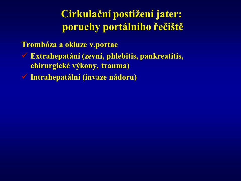 Cirkulační postižení jater: poruchy portálního řečiště