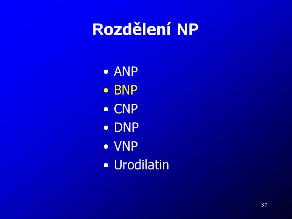 Rozdělení NP ANP BNP CNP DNP VNP Urodilatin