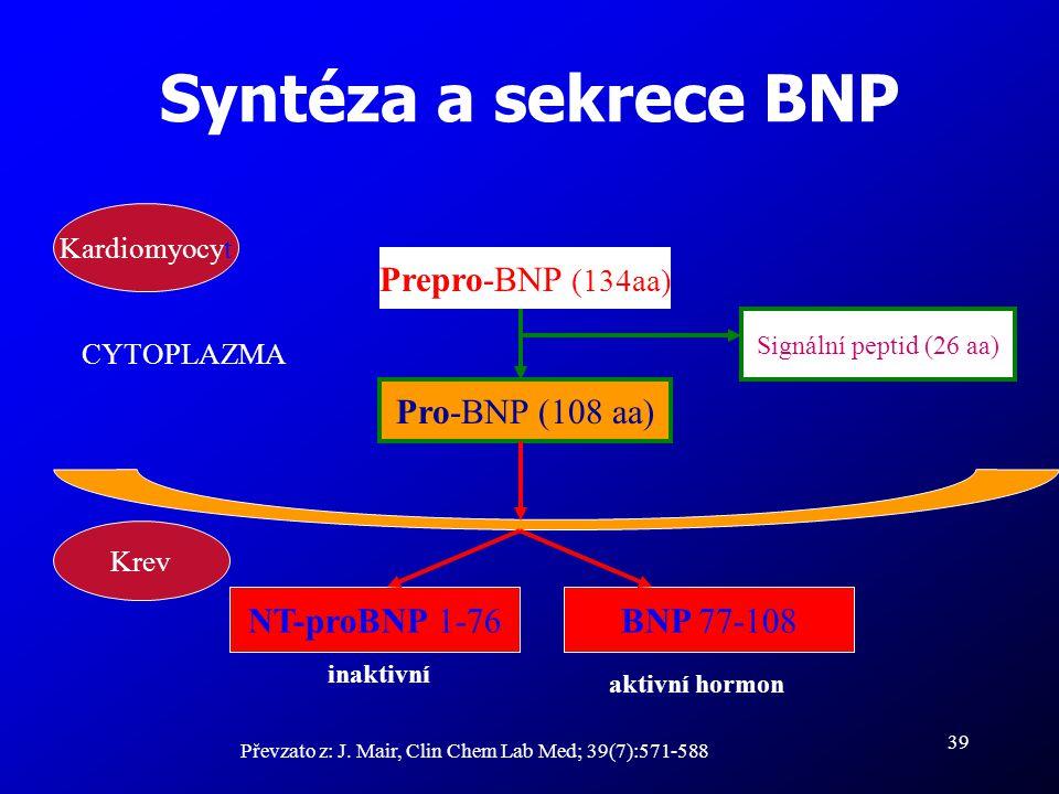 Syntéza a sekrece BNP Prepro-BNP (134aa) Pro-BNP (108 aa) BNP 77-108