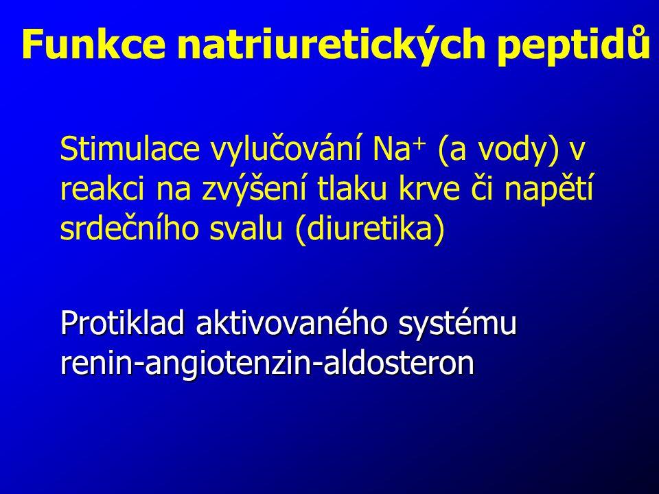 Funkce natriuretických peptidů