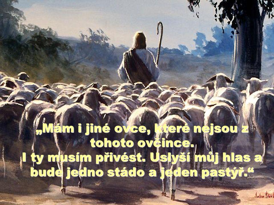 """""""Mám i jiné ovce, které nejsou z tohoto ovčince. I ty musím přivést"""