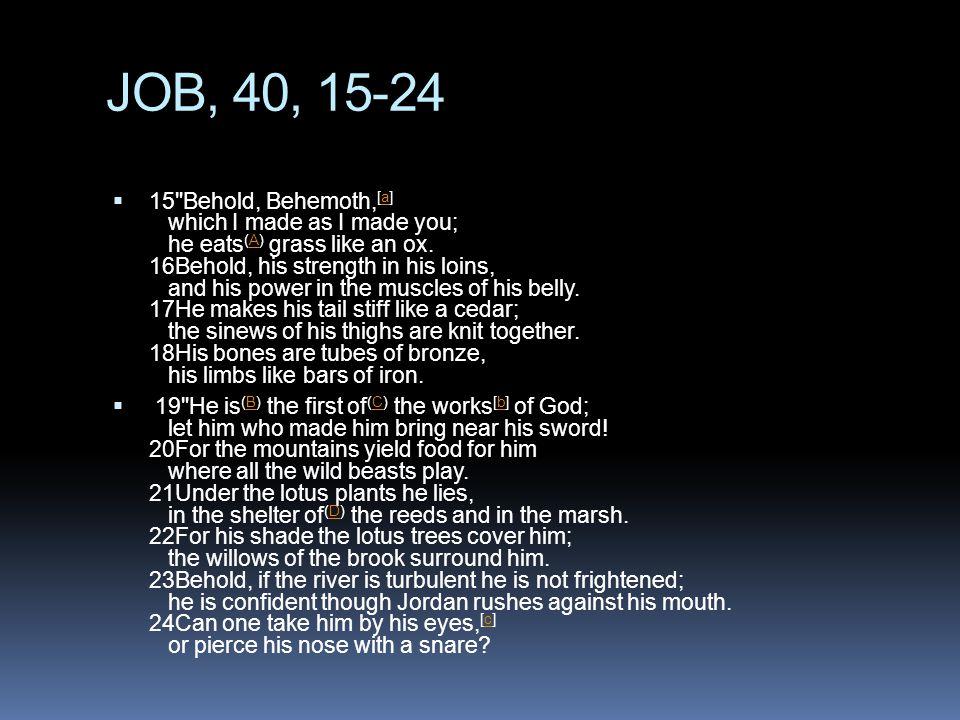 JOB, 40, 15-24