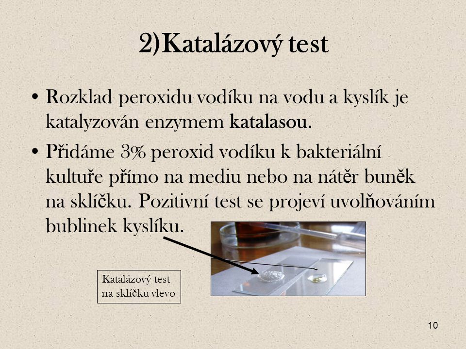 2)Katalázový test Rozklad peroxidu vodíku na vodu a kyslík je katalyzován enzymem katalasou.