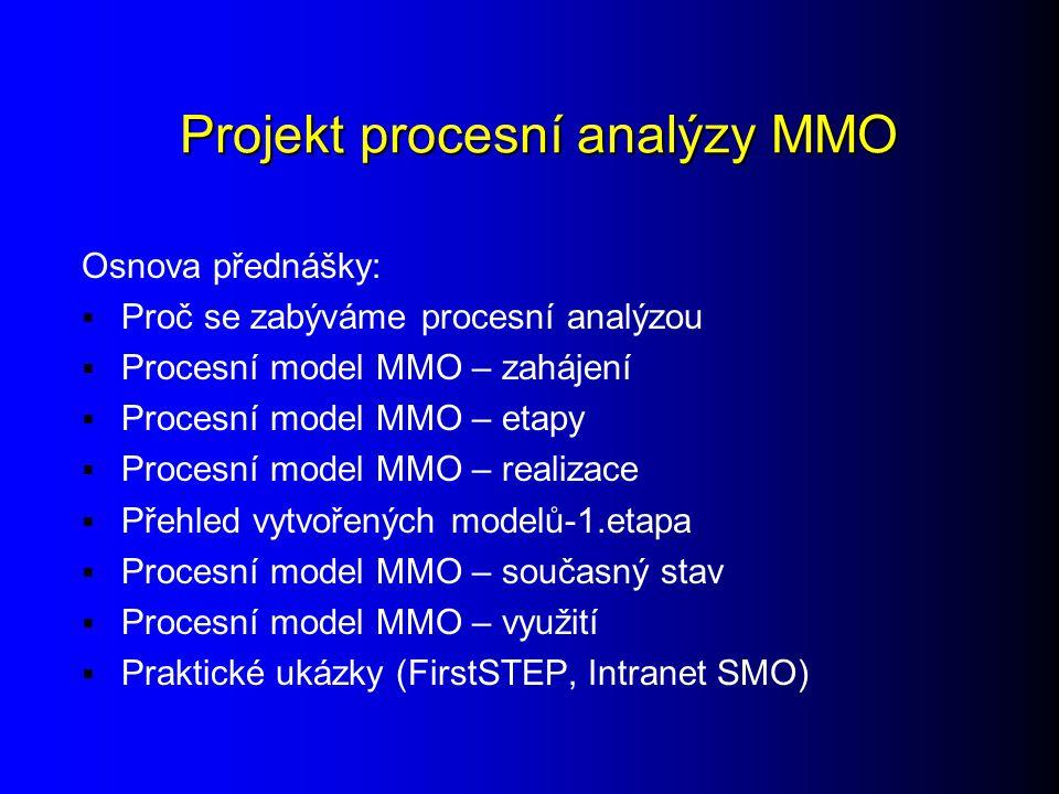 Projekt procesní analýzy MMO
