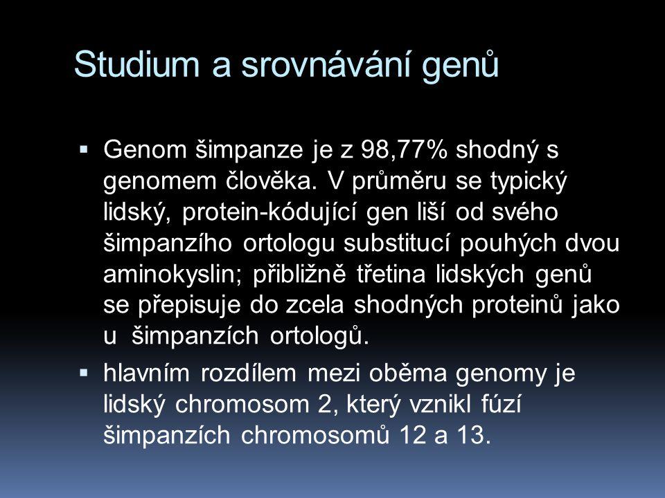 Studium a srovnávání genů