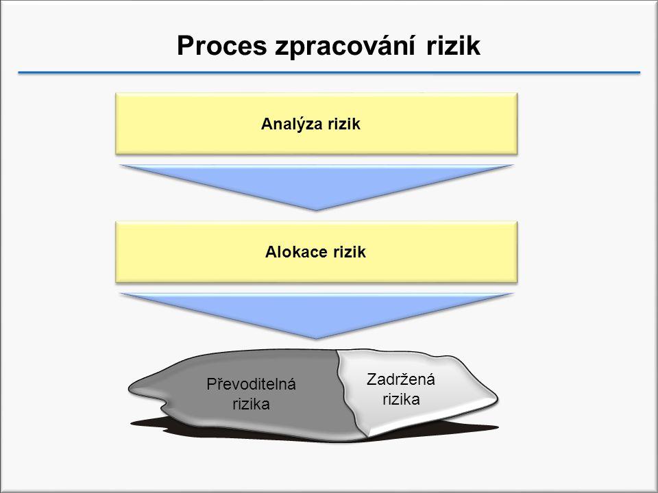 Proces zpracování rizik