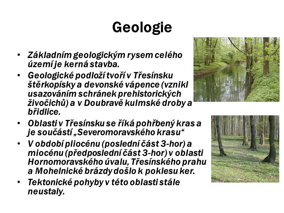 Geologie Základním geologickým rysem celého území je kerná stavba.
