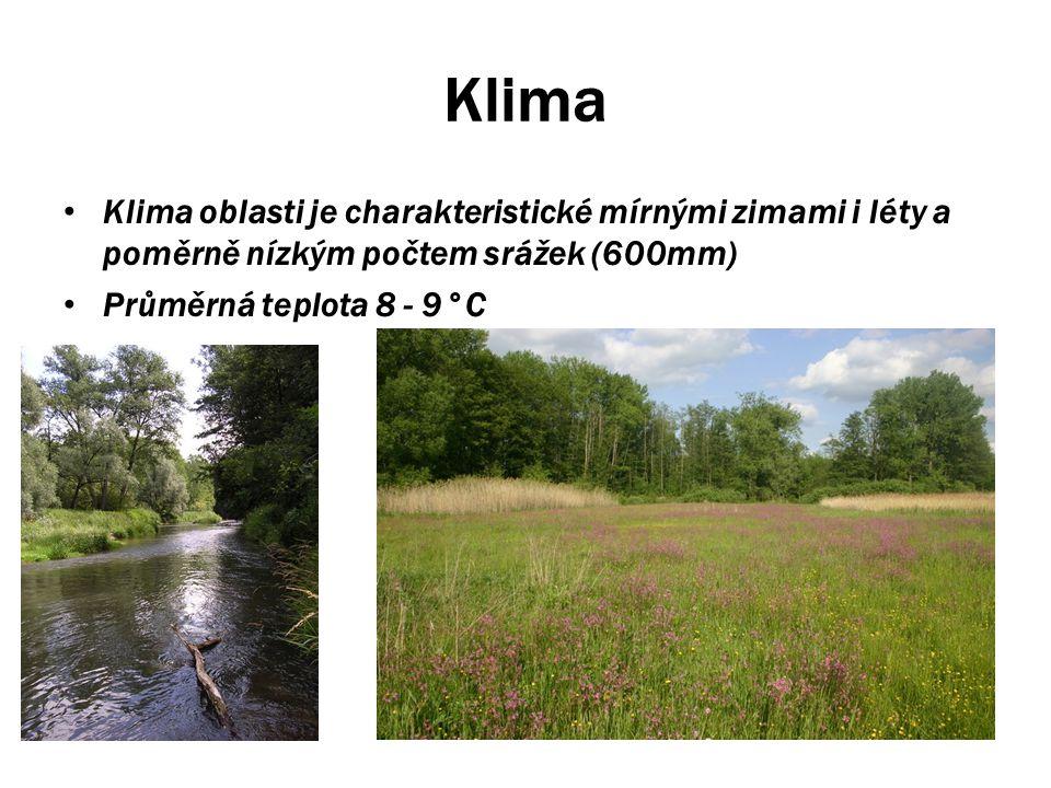 Klima Klima oblasti je charakteristické mírnými zimami i léty a poměrně nízkým počtem srážek (600mm)