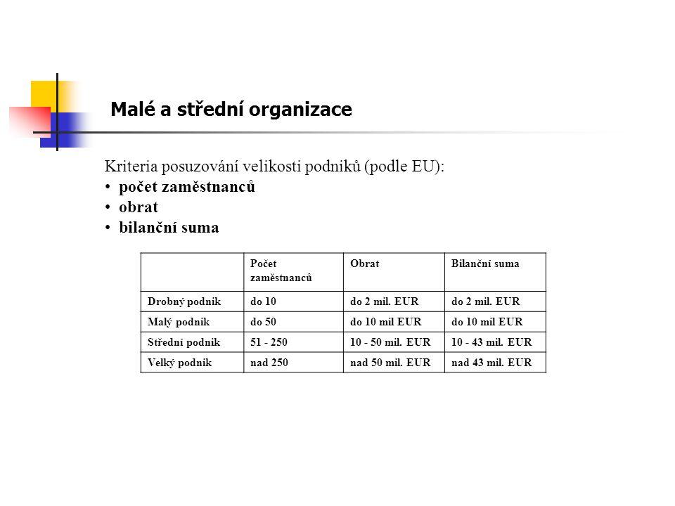Malé a střední organizace