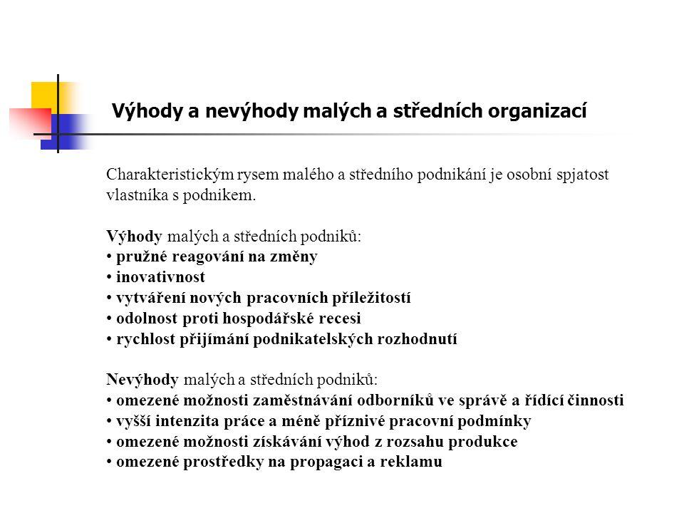 Výhody a nevýhody malých a středních organizací
