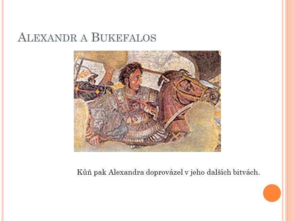 Alexandr a Bukefalos Kůň pak Alexandra doprovázel v jeho dalších bitvách.